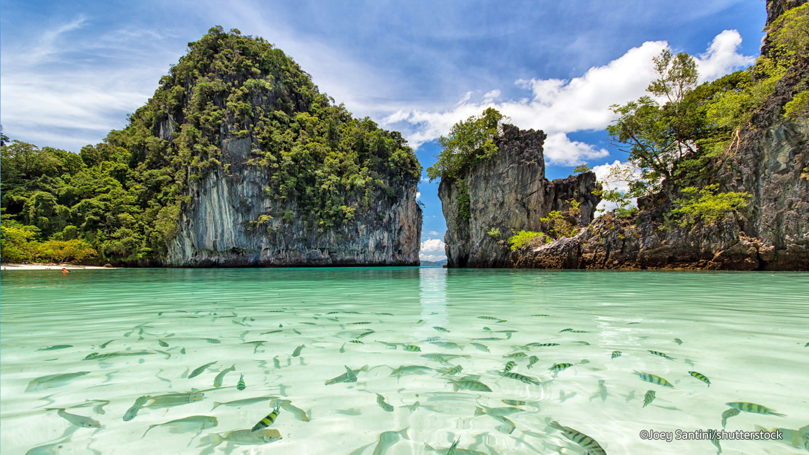 YOUR REFUND TICKET FOR INVESTMENT IN PHUKET IN THAILAND