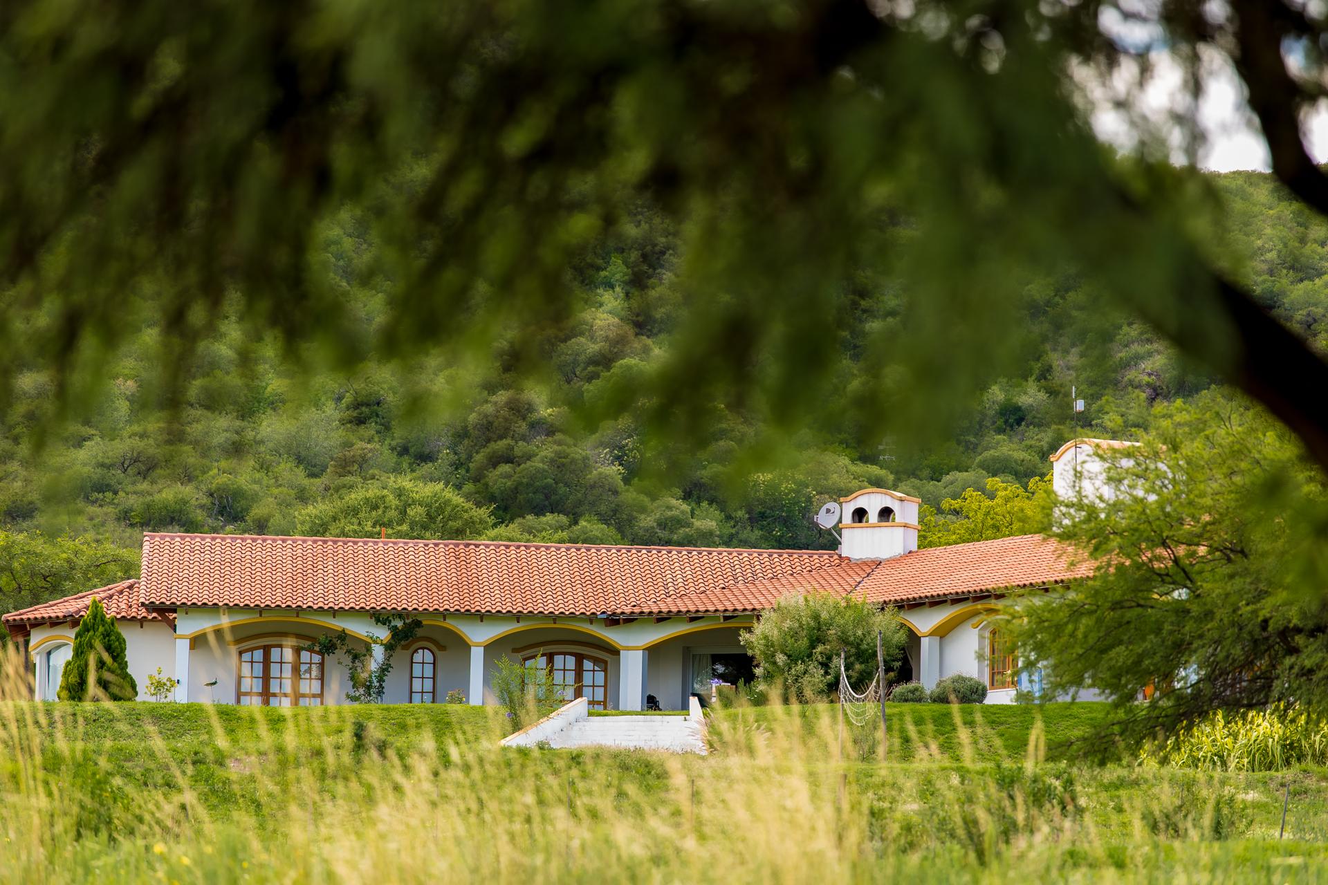 Están comprando propiedades en España